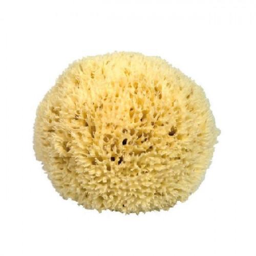 Eponge de mer ultra fine pour le visage - 10 cm