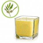Bougie de massage au beurre de karité & arbre à thé