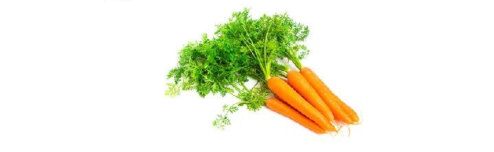 Macerat de carotte vierge et biologique