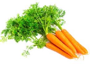 Macerat de carotte