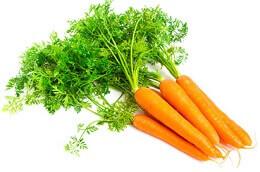 Propriétés et bien bienfaits de la carotte