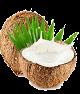 L'huile de coco :