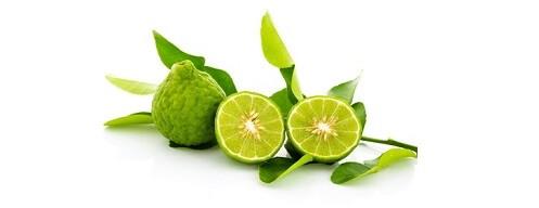Huile essentielle de bergamote - Citrus bergamia
